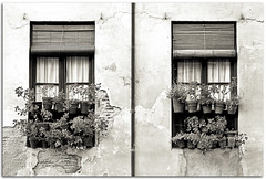 Almost symmetry | Casi simetra (Antonio Carrillo (Ancalop)) Tags: windows wall canon pared andalucia ventanas granada macetas 70200mm paseodelostristes ancalop 70200mf4usm