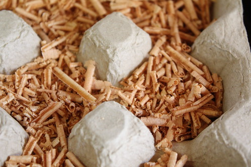 how to make firestarters with sawdust