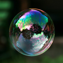 Painting Reflexions (vasi v) Tags: bravo explorer scout housetreereflectionsskycloudsmirrorballoon bubblesoapbokeh