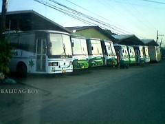 farinas bus garage sa Laoag city (Baliwag boy) Tags: city buses laoag norte pagudpud rcj farinas ilokos batac