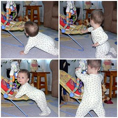Learning to stand - 262 days old
