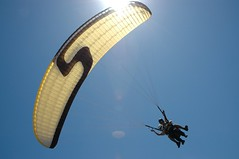 Don't look up (James Wheare) Tags: australia paragliding portmacquarie