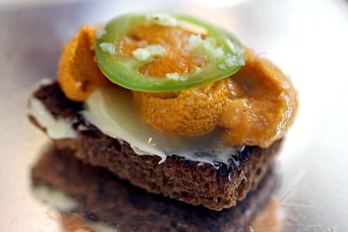 Macro of Santa Barbara Sea Urchin, Black Bread, Jalapeno, Yuzu