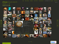 oSkope Flickr Search Grid