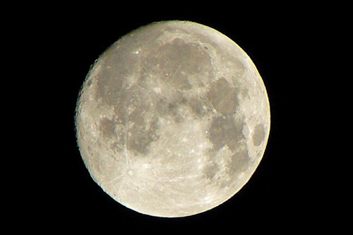 Harvest Moon 2007