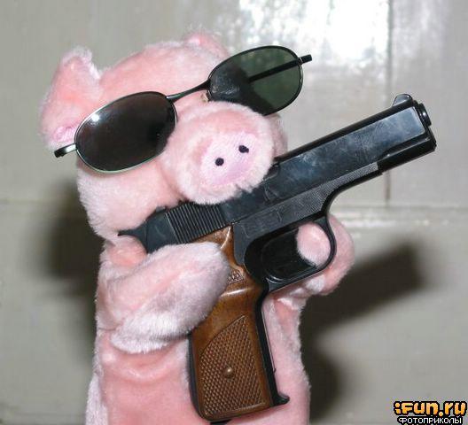 Piglet with gun