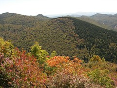 View from Sam Knob.JPG