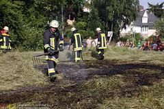 Grasflächenbrand Hirtenstraße 23.06.10
