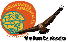 voluntariadoBUITRES copia
