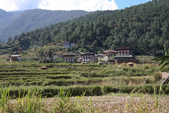 Bhutan-29
