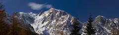 Monte Rosa (carlobaldino) Tags: sky italy snow rosa piemonte cielo panoramica neve monte piedmont verbano macugnaga ossola massiccio cusio platinumphoto