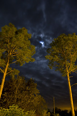 Town Lights (TTYL8R) Tags: longexposure trees moon night texas tx blessing pollution