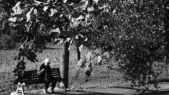 """L'omino II (claudio """"clod"""" giuliani) Tags: bw photo casa strada foto natura campo mura perone bibbia pistola biancoenero cappello fotografo corinaldo divieto uomini panchina passeggiata vigili anziano prete bastone divisa berretto poaint tonaca"""