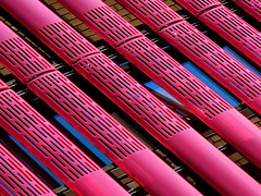 Love the Pink... :-) (annpar) Tags: pink toronto abstract lines architecture graphic bright contemporary vivid structure diagonal umbra top20pink