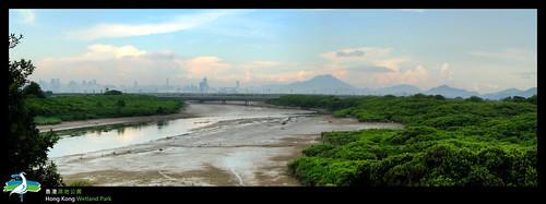 泥灘與遠方的深圳.一灣之隔的故事