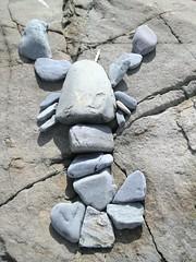 Rock Lobster! - by katken