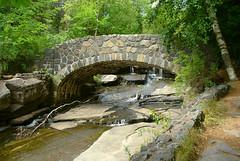 P1030349 (daylapt) Tags: bridge wild minnesota animals zoo superior greatlakes 101 waterfalls duluth wildanimals dayla greatlakeszoo daylapt