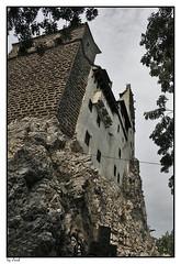 dracula castlle (Cloud_400d) Tags: casa dracula monte vampiro transilvania castillo rumania piedra castlle fotoscloud ltytr1