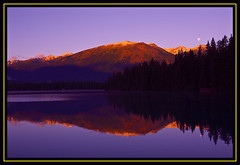 Lac Beauvert Sunrise/Moonset (melmark44) Tags: sky moon mountain snow canada mountains nature water beautiful sunrise reflections dawn glacier fullmoon alberta canon5d canonef2470mmf28lusm moonset jaspernationalpark beautifulscenery glacial lacbeauvert cloudlesssky whistlersmountain morningmoon daytimemoon beautifullandscape keepexploring internationalgeographic melmarkowitz southjasperrange 2007melvinmarkowitz