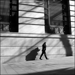 (Kenneth McNeil) Tags: street city shadow urban blackandwhite bw white man black building 120 6x6 mediumformat square alone shadows place martin squares empty sydney shapes citylife streetphotography australia hasselblad squareformat medium format isolation australien shape shadesofgrey tones martinplace carlzeiss hasselblad500c planar80mm carlzeissplanar80mmf28 kennethmcneil