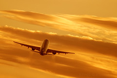 Commercial airplane climbing after take off in the sunset. (Greg Bajor) Tags: uk sky london airplane heathrow aviation jet aeroplane gregory takeoff a320 birdlike bajor birdlikeimages irbus gregbajor
