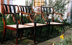 3_antique_cane_chairs