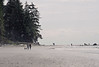 Sea mist (Georgio R.) Tags: trees sea mist beach dogs canon sand waves walk ethereal stroll blueribbonwinner mywinners anawesomeshot aplusphoto