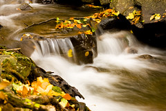 Autumn water (victoriafoto*) Tags: mountain water colors leaves stone creek waterfall stream patak mtra vzess mtrakeresztes