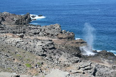 IMG_8608 (avsfan1321) Tags: maui hawaii usa unitedstates unitedstatesofamerica nakalelepoint nakaleleblowhole nakalele ocean blowhole