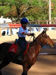 Rio Claro - SP (Daniel Pascoal) Tags: public cavalo rioclaro danielpg hipismo danielpascoal