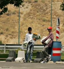 boys (Farsani) Tags: boy flower boys magazine iran badger vendor iranian tehran