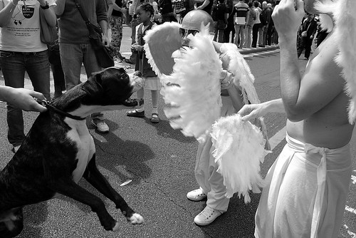 creative commons hi-res photo of the day:  The boxer and the angels (1200 x 801)