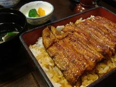うな重 UNa Ju / KaBaYaki Broiled eels on rice