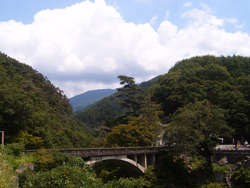 Shosenkyo valley Forest