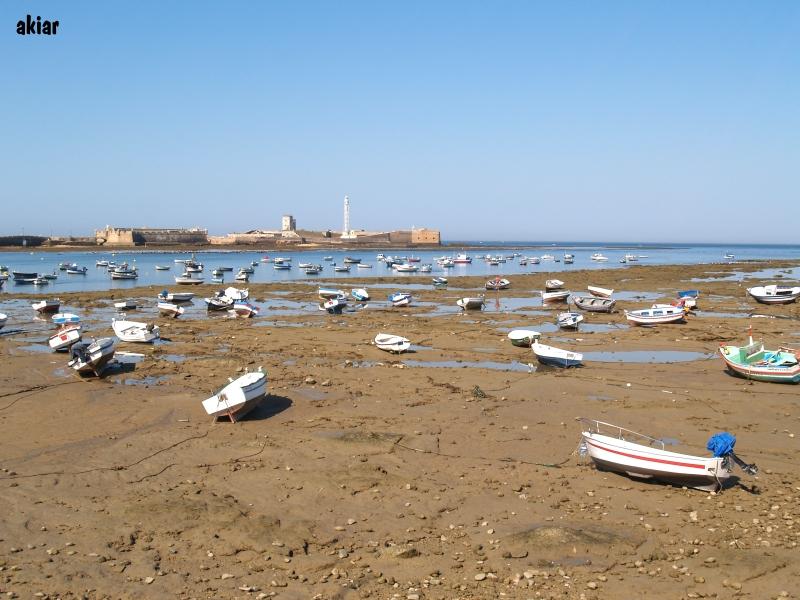Baja Mar 04