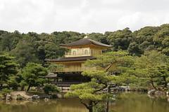 Kinkaku-ji Temple 金閣寺