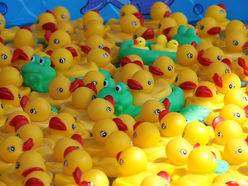 Catch a duckie...