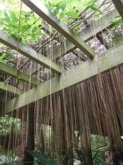 47.山芙蓉咖啡坊_巴里島風格的裝飾