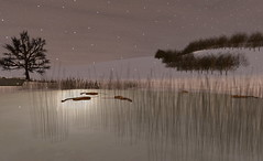 A quiet resonance under the moonlight (Hitomi Mokusei) Tags: ice evening frozen pond sl secondlife moonlight violins snowylandscape ballstateuniversity resonance virtualworld amradio idia centerformediadesign instituteofdigitalintermediaarts