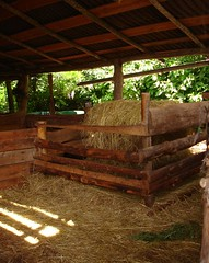 So simple - hay system for the goats (hardworkinghippy) Tags: june shed fabrice irene organic shelter permaculture sheds developpementdurable henhouse chickencoop cabins biologique chickenhouse potager dveloppementdurable selfsufficiency goatshed chickenshed bourrou animalshelters goathouse animalhousing biodiversit hardworkinghippy woodensheds animalsshelter keepingchickens keepinggoats buildingsheds hwhshelters buildinganimalshelters shelterforgoats homemadechickensshed permaculturefrance agirlocalpenserglobal