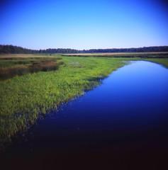 My Favorite River
