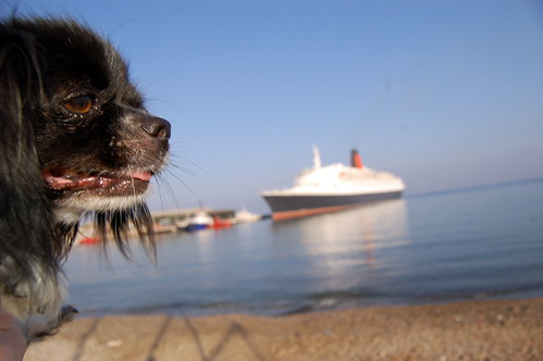 Poppy and the QE2