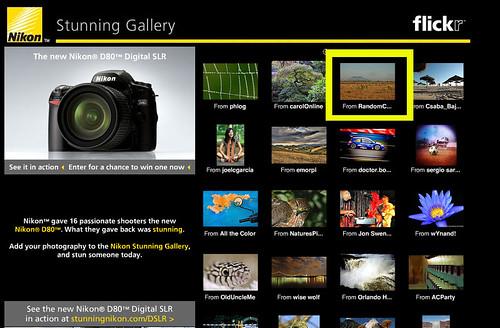 Nikon Stunning Gallery Selection