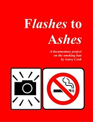 The cover of my Flashes to Ashes book