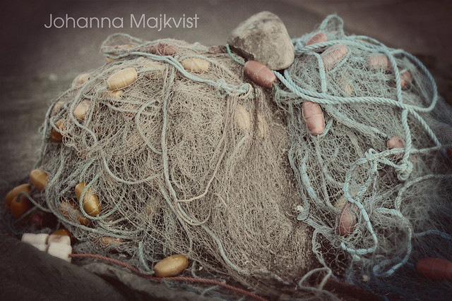 fiskenät