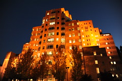 Amazon.com, PAC-MED Building, art deco style, golden trees, golden building, golden night, fall, Beacon Hill, Seattle, Washington, USA (Wonderlane) Tags: seattle usa fall night washington amazoncom beaconhill artdecostyle goldentrees 0336 goldenbuilding goldennight pacmedbuilding