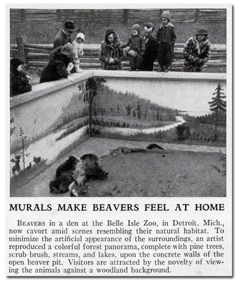 beaver_murals