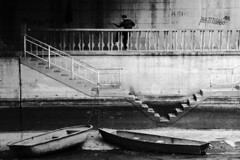 (Nocturnales) Tags: china street morning bridge bw boats early beijing streetphotography rue taichi lonefigures mikaelmarguerie