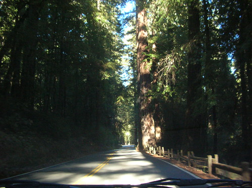 Entrance of Big Basin State Park