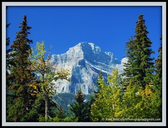 Canadian Rockies (westrock-bob) Tags: park autumn trees copyright mountain canada mountains fall leaves rockies photography nationalpark bob canadian rockymountain banff canmore allrightsreserved westrock canadien kanada banffnationalpark canadianrockies kanata goldenmix cuthill aplusphoto ysplix excapture wonderfulworldmix westrockbob bobcuthillphotographygmailcom
